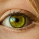 psychosomatique yeux émotion conjonctivite chalazion orgelet