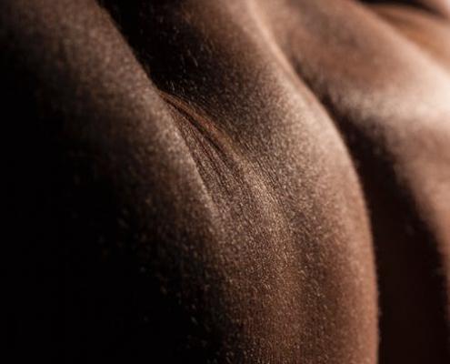 La peau : signification psychosomatique